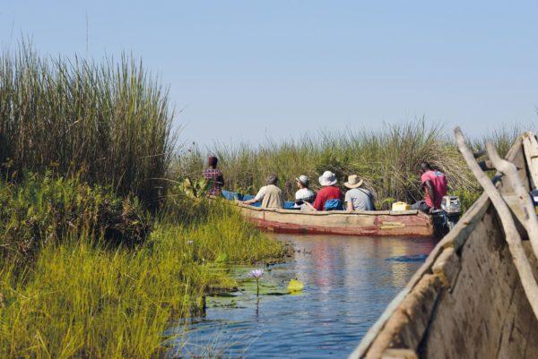 Wildnisse Zambia